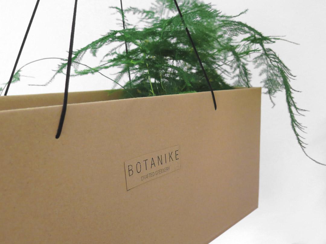 botanike_kokedama-gift